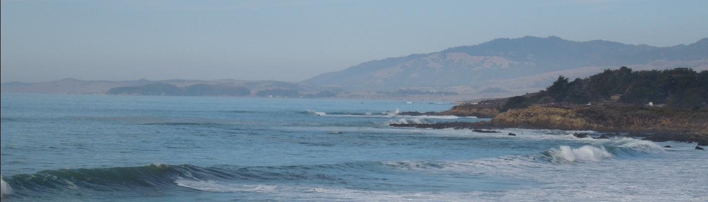 A California Life
